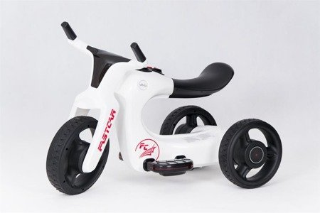 SW168 Motorbike Tricycle Battery  WHITE