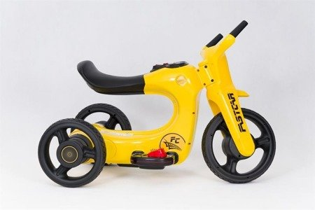SW168 Motorbike Tricycle Battery  YELLOW